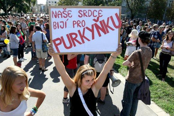 purkynka04