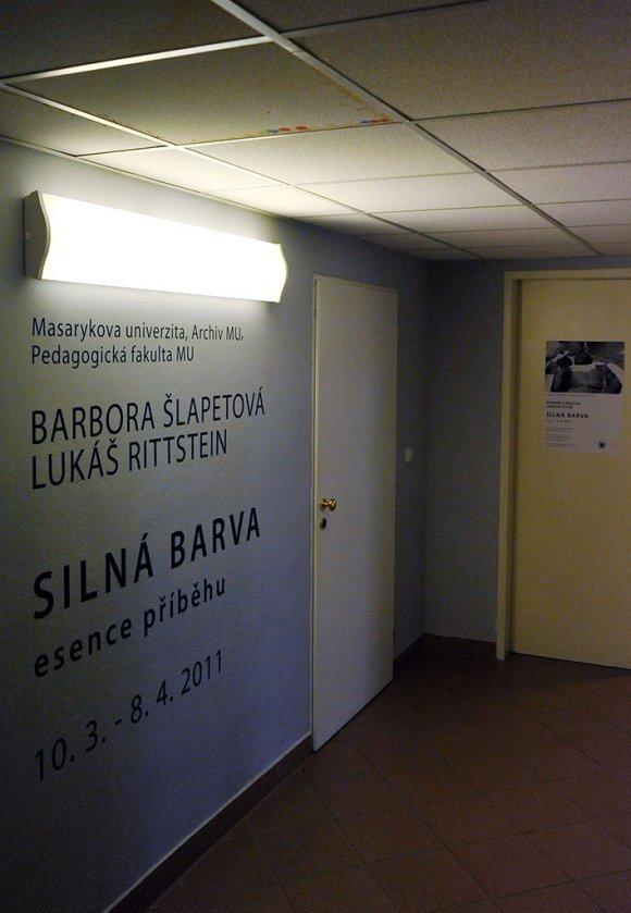 silna_barva001