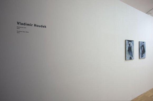 web_houdek001