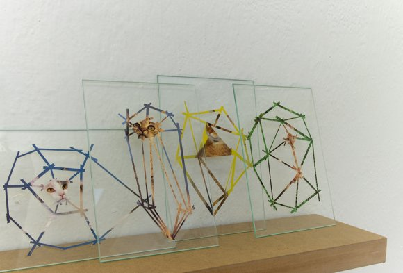 krystal018