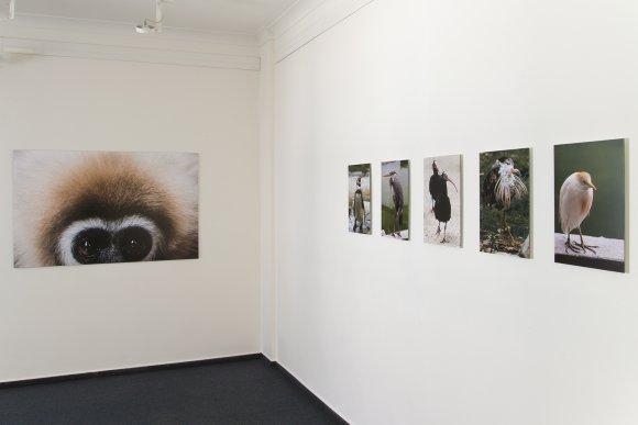 zoo_vystava005