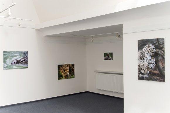zoo_vystava016