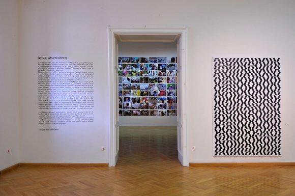 vystava019
