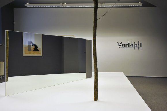 variabil008